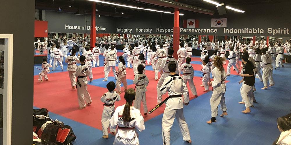 Adult Taekwondo Practice
